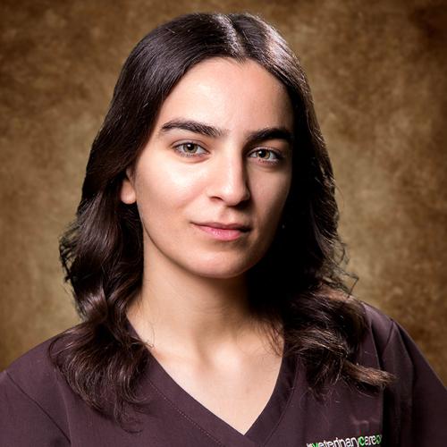 Liz Amirkhanian